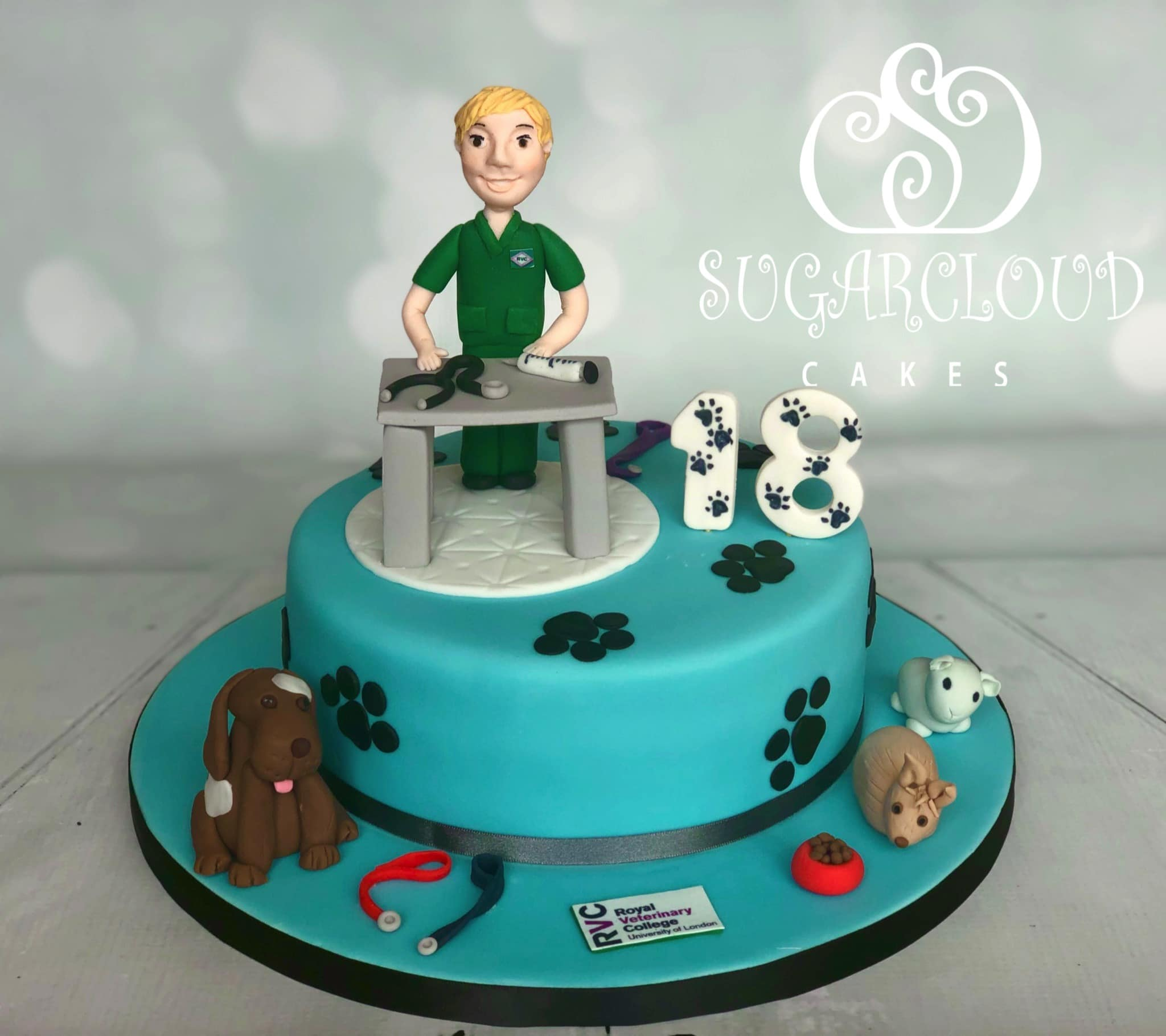 Jack's Vet and Animal Themed 18th Birthday Cake, Nantwich